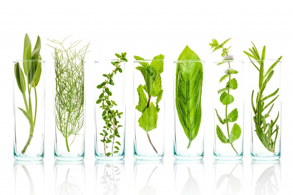 Different herbs inside glasses