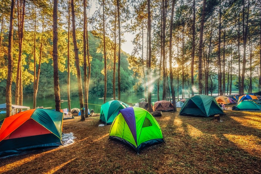 camping site in the forest near the river